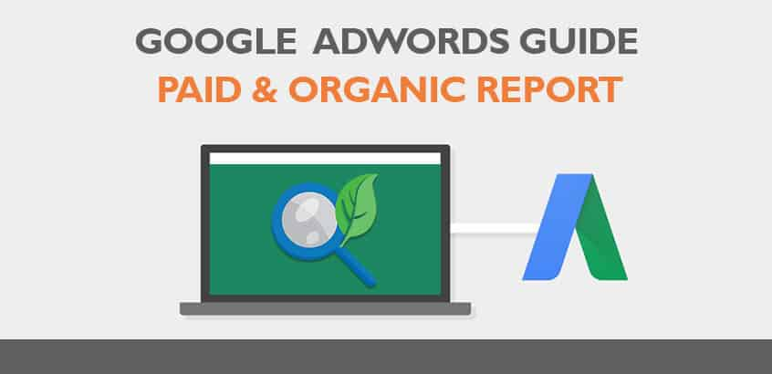 adwords paid organic report guide
